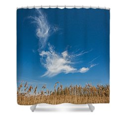 Shower Curtain featuring the photograph Freedom by Davorin Mance