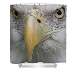 Freedom Eagle Shower Curtain