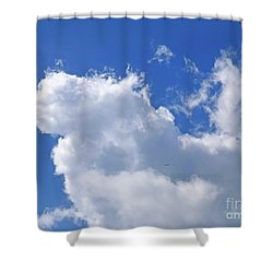 Shower Curtain featuring the photograph Freedom by Francesca Mackenney