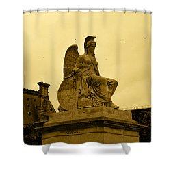 Freedom Guardian Shower Curtain
