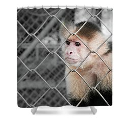 Freedom Not Bigger Cage Shower Curtain