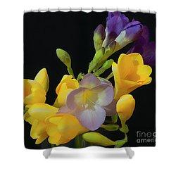 Freesias Softened 9 Shower Curtain