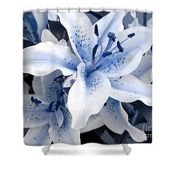 Freeze Shower Curtain