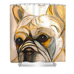French Bulldog Drawing Shower Curtain by Ania M Milo