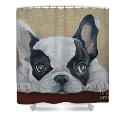 Shower Curtain featuring the painting French Bulldog by Jindra Noewi