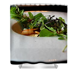 French Course Appetizer Shower Curtain
