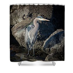Shower Curtain featuring the photograph French Creek Heron by Randy Hall