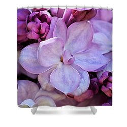 French Lilac Flower Shower Curtain by Rona Black