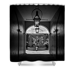 French Market's Michelle In Black And White Shower Curtain