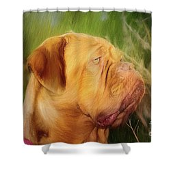 French Mastiff  Shower Curtain by Eleanor Abramson