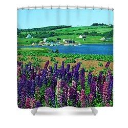French River, Prince Edward Island Shower Curtain