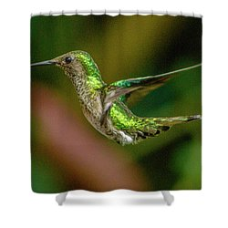 Frequent Flyer 2, Mindo Cloud Forest, Ecuador Shower Curtain by Venetia Featherstone-Witty