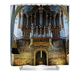Fresco Of The Last Judgement And Organ In Albi Cathedral Shower Curtain by RicardMN Photography