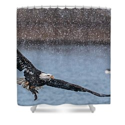 Shower Curtain featuring the photograph Fresh Catch by Kelly Marquardt
