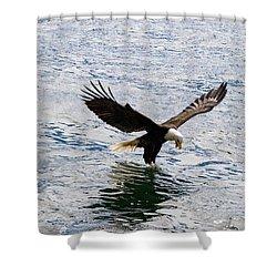 Fresh Catch Shower Curtain