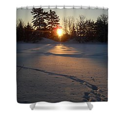 Fresh Deer Tracks At Sunrise Shower Curtain
