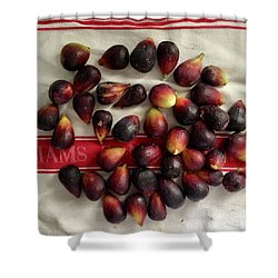 Fresh Figs Shower Curtain by Kim Nelson