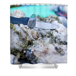 Shower Curtain featuring the photograph Fresh Oysters by Erin Kohlenberg