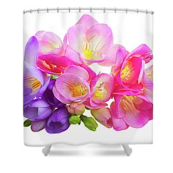 Fresh Pink And Violet Freesia Flowers Shower Curtain