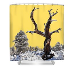 Fresh Snow Shower Curtain