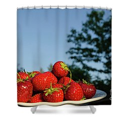 Shower Curtain featuring the photograph Fresh Strawberriesl by Kennerth and Birgitta Kullman