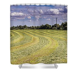 Freshly Mown Hay  Shower Curtain by John Trax