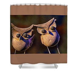 Frick And Frack Shower Curtain by Paul Wear