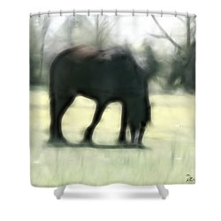 Shower Curtain featuring the photograph Friend Of Distinction  by EricaMaxine  Price
