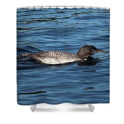 Friend Of The Lake. Shower Curtain