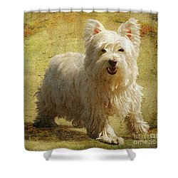 Friendly Smile Shower Curtain by Lois Bryan