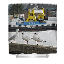 Friends - Woolwich Arsenal London Shower Curtain
