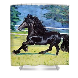 Friesian, Run Like The Wind Shower Curtain