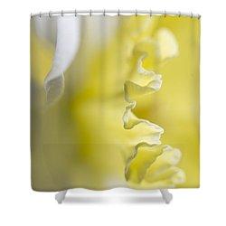 Frills Shower Curtain