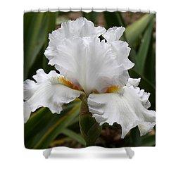 Frilly White Iris Flower Shower Curtain