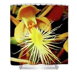 Fringed Yellow Orchid Shower Curtain