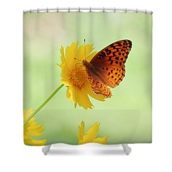 Fritillary Fun Shower Curtain by MTBobbins Photography