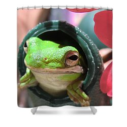 Frog At Selby Shower Curtain by Michele Penn