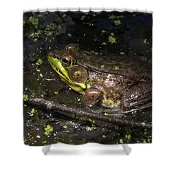 Frog Closeup Shower Curtain