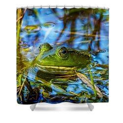Frog In My Pond Shower Curtain