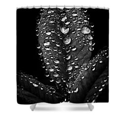 Frog Legs Shower Curtain