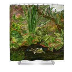 Frog Medicine Shower Curtain