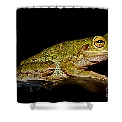 Shower Curtain featuring the photograph Cuban Tree Frog by Olga Hamilton