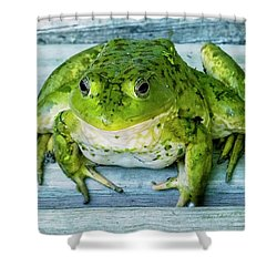 Frog Portrait Shower Curtain by Edward Peterson