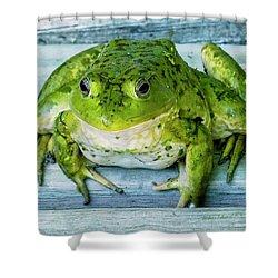 Frog Portrait Shower Curtain