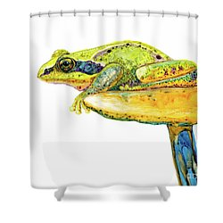 Frog Sitting On A Toad-stool Shower Curtain