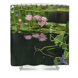 Water Lily Reflections Shower Curtain by Linda Geiger