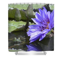 Frog With Water Lily Shower Curtain by Linda Geiger