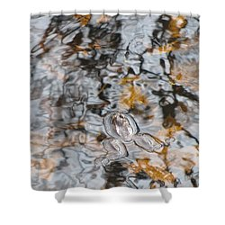 Froggy Abstract 1031 Shower Curtain