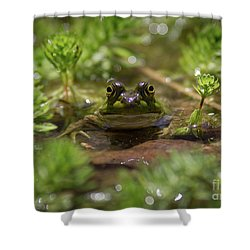 Shower Curtain featuring the photograph Froggy by Douglas Stucky