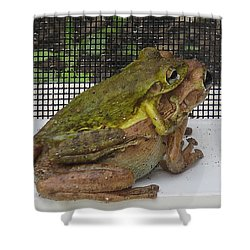 Froggy Love Shower Curtain